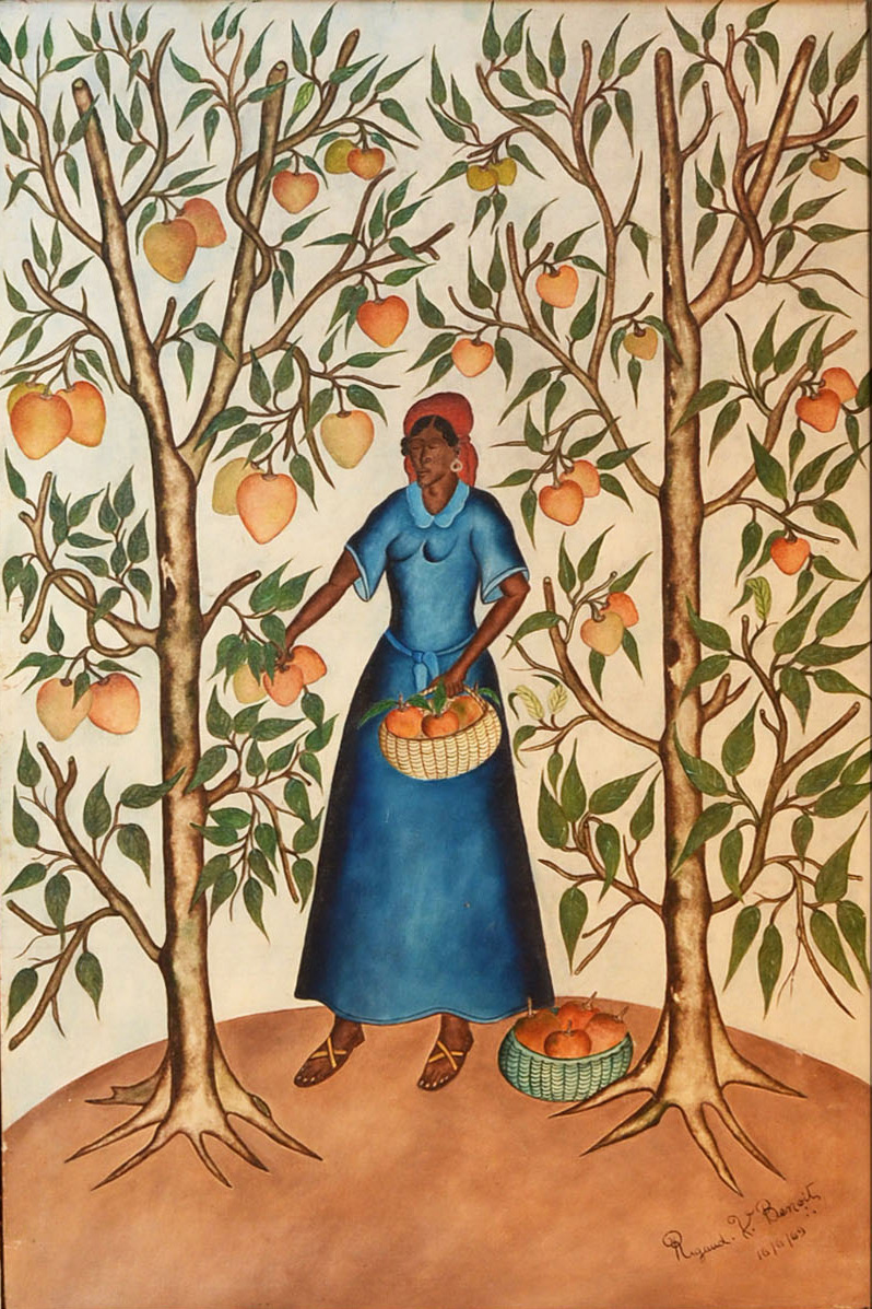 Woman Picking Mangos